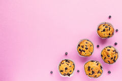Домодельные булочки голубики на розовой предпосылке Стоковые Изображения