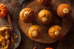 Домодельные булочки специи тыквы Стоковая Фотография
