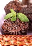 Домодельные булочки шоколада в бумажном держателе пирожного Стоковая Фотография