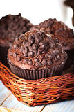 Домодельные булочки шоколада в бумажном держателе пирожного Стоковое Изображение RF