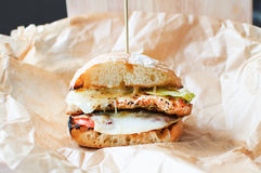Домодельные гамбургер или cheeseburger с овощами Стоковое Изображение RF