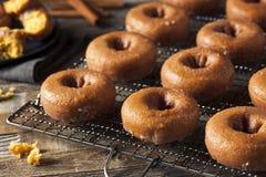 Домодельные застекленные Donuts тыквы осени Стоковое Фото