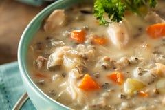 Домодельные дикие рисы и куриный суп Стоковое Изображение