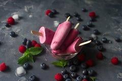 Домодельные, который замерли popsicles плодоовощ с свежими естественными поленикой и голубикой, мороженым с ягодами Стоковое Изображение RF