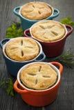 Домодельные кухонные рукавички Стоковая Фотография