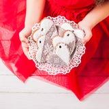 Домодельные печенья в руках Стоковое Фото