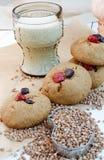 Домодельные печенья гречихи с клюквами и покрашенными камнями шоколада Стоковая Фотография