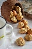 Домодельные печенья кокоса Стоковые Фотографии RF