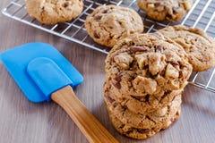 Домодельные печенья обломока шоколада с грецкими орехами Стоковое Фото
