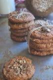 Домодельные печенья овсяной каши на подносе металла Стоковая Фотография RF
