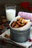 Домодельные печенья овсяной каши с гайками, изюминкой и высушенными клюквами Стоковые Фотографии RF