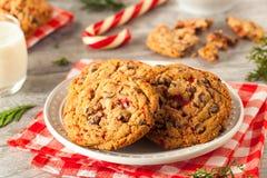 Домодельные печенья пипермента шоколада Стоковая Фотография RF