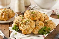 Домодельные печенья сыра чеддера Стоковые Фото