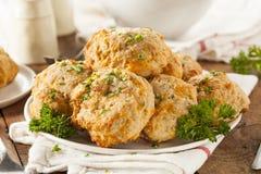 Домодельные печенья сыра чеддера Стоковые Изображения