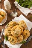 Домодельные печенья сыра чеддера Стоковое Изображение RF