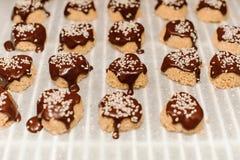 Домодельные печенья с семенами сезама, шоколадом Стоковая Фотография