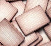 Домодельные печенья. стоковые изображения rf