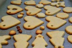 Домодельные печенья Стоковая Фотография