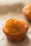 Домодельные пирожные proja, селективный фокус Стоковое Изображение RF