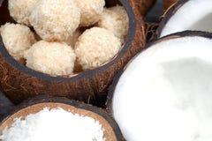 Домодельные помадки в шаре кокоса стоковое фото