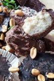 Домодельные сырцовые торты Стоковое Изображение