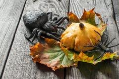 Домодельные сладостные плюшки тыквы на хеллоуин Стоковое Изображение