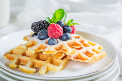 Домодельные ягоды с waffles для завтрака Стоковая Фотография RF