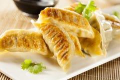 Домодельный азиат Vegeterian Potstickers Стоковое Изображение