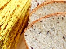 Домодельный варить сделанный от всех пшеницы и зерен с хлебами и ухом рисов Стоковое Изображение