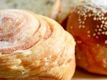 Домодельный варить сделанный от всех пшеницы и зерен с хлебами Стоковые Изображения