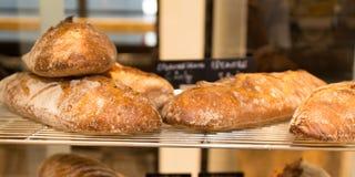 Домодельный варить сделанный от всех пшеницы и зерен с хлебами Стоковая Фотография