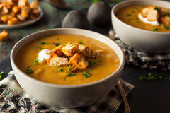 Домодельный горячий суп сквоша Butternut Стоковые Фотографии RF