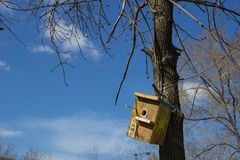 Домодельный деревянный birdhouse на стволе дерева против неба с c Стоковая Фотография RF