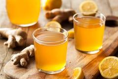 Домодельный заквашенный сырцовый чай Kombucha Стоковая Фотография RF