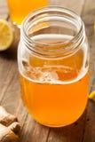 Домодельный заквашенный сырцовый чай Kombucha Стоковое Изображение RF