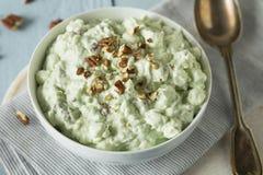 Домодельный зеленый десерт пушка фисташки Стоковое Фото