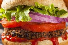 Домодельный здоровый вегетарианский бургер квиноа Стоковая Фотография RF