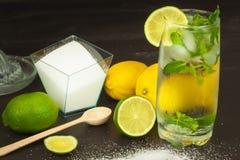 Домодельный лимонад с свежими лимоном и мятой Холодное, освежая погружение в горячем лете Стоковая Фотография RF