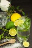 Домодельный лимонад с свежими лимоном и мятой Холодное, освежая погружение в горячем лете Стоковое Фото