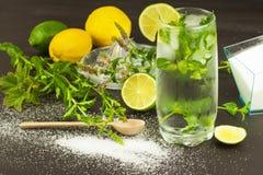 Домодельный лимонад с свежими лимоном и мятой Холодное, освежая погружение в горячем лете Стоковые Изображения RF