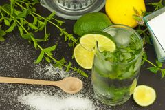 Домодельный лимонад с свежими лимоном и мятой Холодное, освежая погружение в горячем лете Стоковое фото RF