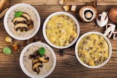 Домодельный коричневый суп чечевицы с нутами и супом гриба стоковые фотографии rf