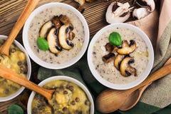 Домодельный коричневый суп чечевицы с нутами и супом гриба стоковое изображение rf