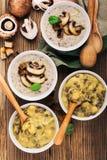 Домодельный коричневый суп чечевицы с нутами и супом гриба стоковые изображения