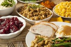 Домодельный обедающий благодарения Турции стоковая фотография