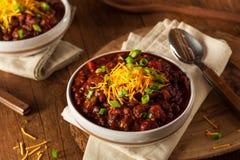 Домодельный органический вегетарианский Chili Стоковые Фото