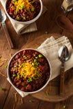 Домодельный органический вегетарианский Chili Стоковое фото RF
