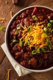 Домодельный органический вегетарианский Chili Стоковая Фотография RF