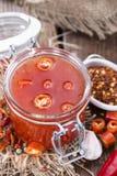 Домодельный соус Chili Стоковые Фото