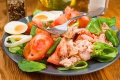 Домодельный среднеземноморской салат с оливковым маслом Стоковая Фотография
